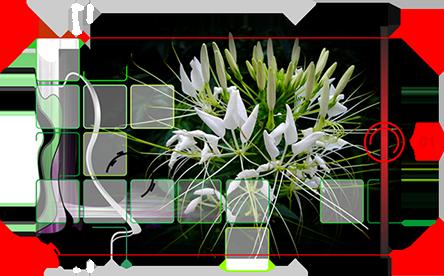 1.b.r.noll diggraf u2022u2022 technische zeichnungen medienproduktion